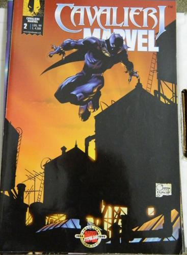 Marvel KnightsItalyPunisher #2