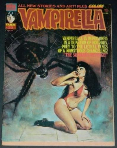 "Vampirella #235/74 ""The Believer"""
